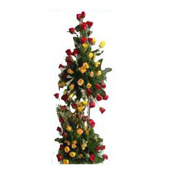 Love U All Life - 100 Mix Roses Life Size Bouquet + Card