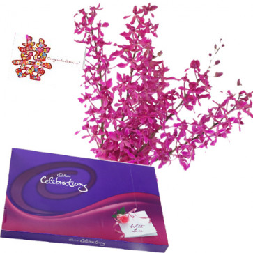 Special Wishes - 12 Purple Orchids + Cadbury Celebration 162 gms + Card