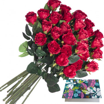 Red Bunch 25 Artificial Red Roses + Card