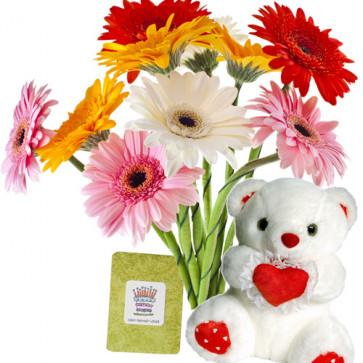 """Mixed Gerberas - 12 Gerberas Bouquet + Teddy 6"""" + Card"""