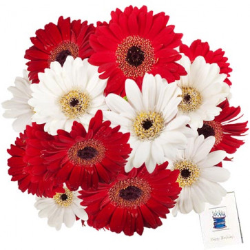 Fragrance of Romance - 24 Red & White Gerberas + Card