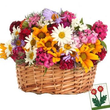 Eternal Affection - 30 Exotic Flowers Basket + Card