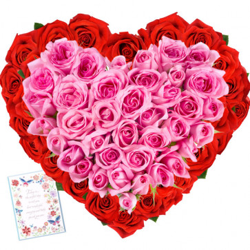 Feel My Heart - 50 Pink & Red Roses Heart Shaped + Card