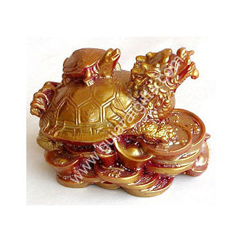 Dragon Headed Tortoise With Baby