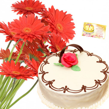 Fab Treat - 20 Pink Gerberas, 1 Kg Vanilla Cake + Card