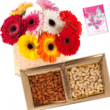 Heavenly - Bunch of 25 Mix Color Gerberas, Almond & Cashew 200 gms Box & Card