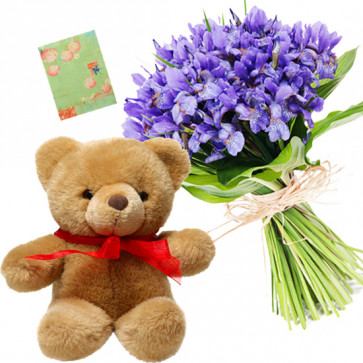 Orchid Delight - 6 Orchids Bunch, Teddy 12 inch + Card