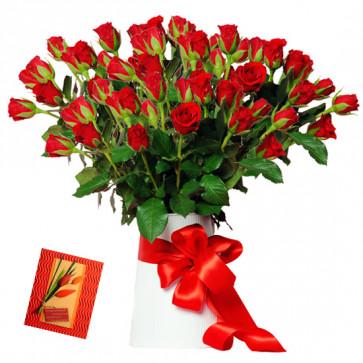 Plenty of Roses - 100 Red Roses in Vase & Card