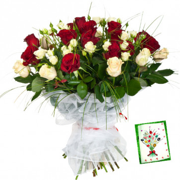 Red N White Bunch - 24 Red & White Roses Bunch & Card