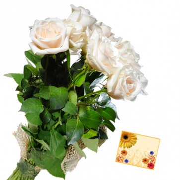 Thrilling Surprise - 6 White Roses Bunch & Card