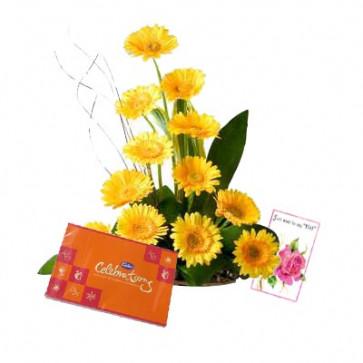 Pleasant Feelings - 12 Yellow Gerberas + Cadbury Celebration 162 gms + Card
