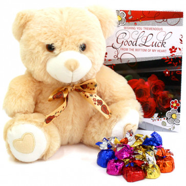 Handmade Teddy - Teddy 10 inch, Assorted Truffle Chocolates 100 gms and Card