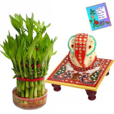 Lucky Ganesha - 3 Layer Lucky Bamboo, Ganesh Chowki & Card