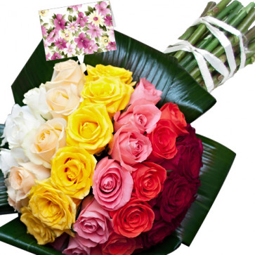 Classy - 50 Assorted Roses + Card