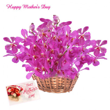 Orchid For You - 24 Purple Orchids Basket and Card