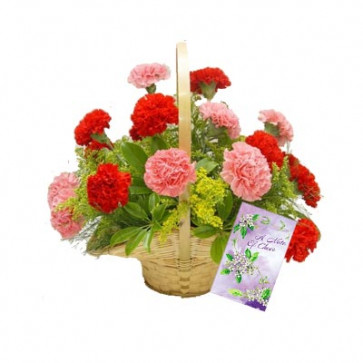 Colorful Basket - 24 Pink & Red Carnations Basket + Card