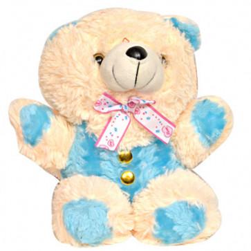 Colorful Loving Teddy (10 Inch)
