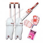 Cricket Special - Bat, Leg Guards, Stumps With Bales, Batting Gloves and Card