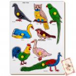 Bird - Parrot Tray