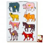 Domestic Animals (Large)