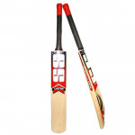 Cricket Bat (Size 6)