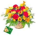 Warm Wishes - 15 Carnation Basket + Card