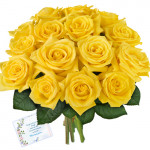 A Lasting Friendship - 12 Yellow Roses Bunch + Card