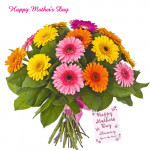 Flower Assortment - Bouquet of 15 Multi Coloured Gerberas and Card