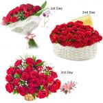 3 Day Serenade : Fascinating Flowers