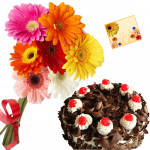 Appealing Tribute - 12 Mix Gerberas, 1/2 Kg Black Forest Cake + Card