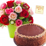 Lovely Presents - 15 Pink and Red Roses in Vase, 1/2 Kg Chocolate Cake + Card
