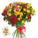 Happy Mix - 100 Mix Roses Bunch & Card