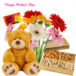 "Gerberas Special - 15 Mix Gerberas , Teddy 8"", Assorted Dryfruits 200 gms and Card"