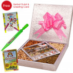Holi Sweets - Kaju Mix 500 gms, Assorted Dry fruits 500 gms, Pichkari, Herbal Gulal & Greeing Card