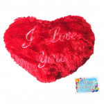 Couple's Love - Heart Pillow and Card