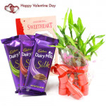 Silky Luck - 3 Dairy Milk Silk, 1 Layer Bamboo Plant and Card