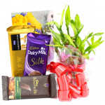 Lucky Bars - 3 Layer Bamboo Plant, Temptations, Dairy Milk Silk, Bournville and Card