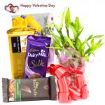 Lucky Bars - 1 Layer Bamboo Plant, Temptations, Dairy Milk Silk, Bournville and Card