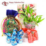 Lucky Assortment - 1 Layer Bamboo Plant, Assorted Truffle Chocolates 100 gms in Potli and Card