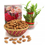 Almondy Luck - Almond in Basket, 3 Layer Bamboo Plant
