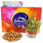 Fellow Feelings - Almond, Cadbury Celebrations, 2 Layer Bamboo Plant