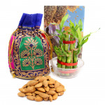 Dear Love - Almond in Potli (D), 2 Layer Bamboo Plant