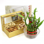 Flavor of Joy - Assorted Dryfruits, 3 Layer Bamboo Plant