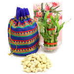 Lucky Potli - Cashew in Potli (D), 3 Layer Bamboo Plant