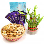 Assorted Luck - Assorted Dryfruits in Basket, 5 Dairy Milk, 2 Layer Bamboo Plant