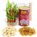 Kaju Draksh - Cashew & Raisins, Rasgulla 500 gms Tin, 3 Layer Bamboo Plant