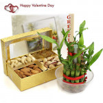Flavor of Joy - Assorted Dryfruits, 1 Layer Bamboo Plant and Card