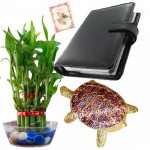 Literary Luck - 2 Layer Lucky Bamboo, Leather Diary, Bejeweled Turtle & Card