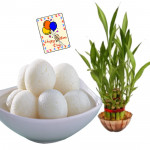 Luck & Sweet - 3 Layer Lucky Bamboo, Rasgulla 500 gms & Card