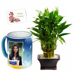 Personalized Luck - 2 Layer Lucky Bamboo Plant, Personalized Mug & Card